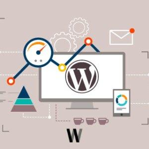 WordPress HTML Compression Minify [eklentisiz]