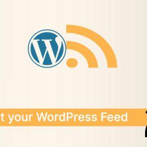 Boost your WordPress Feed 🚀