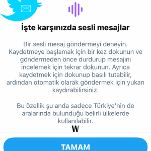 Twitter DM'de sesli mesajlaşma