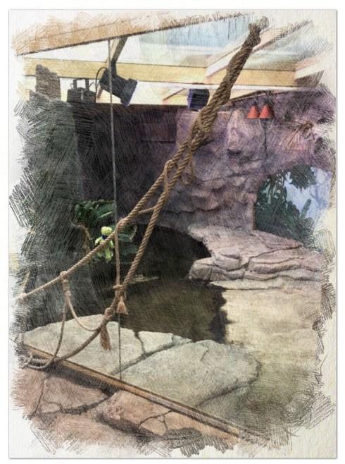 Buddy-Such-Bilder im Aquarium - Wolken Sternchen - Lese- und Hörspielgeschichten für Kinder und ihre Eltern