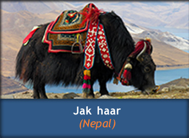 Informatie over Jakhaar