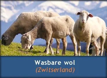 Wasbare wol van schapen die grazen op de almen in Zwitserland en Zuid-Duitsland