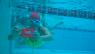 2012 MS 24hr Mega Swim in Wollongong