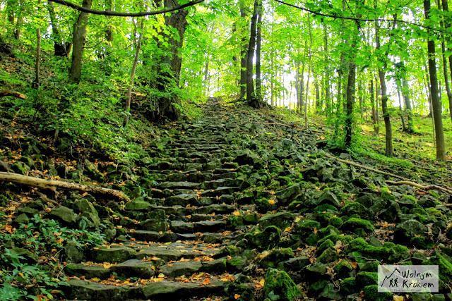 Szlak wygasłych Wulkanów dolny Śląsk