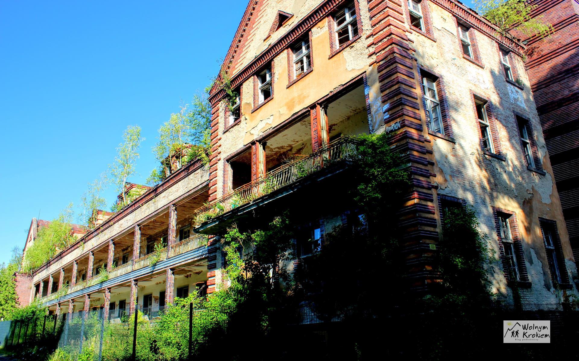 Beelitz Baum und Zeit Szpital