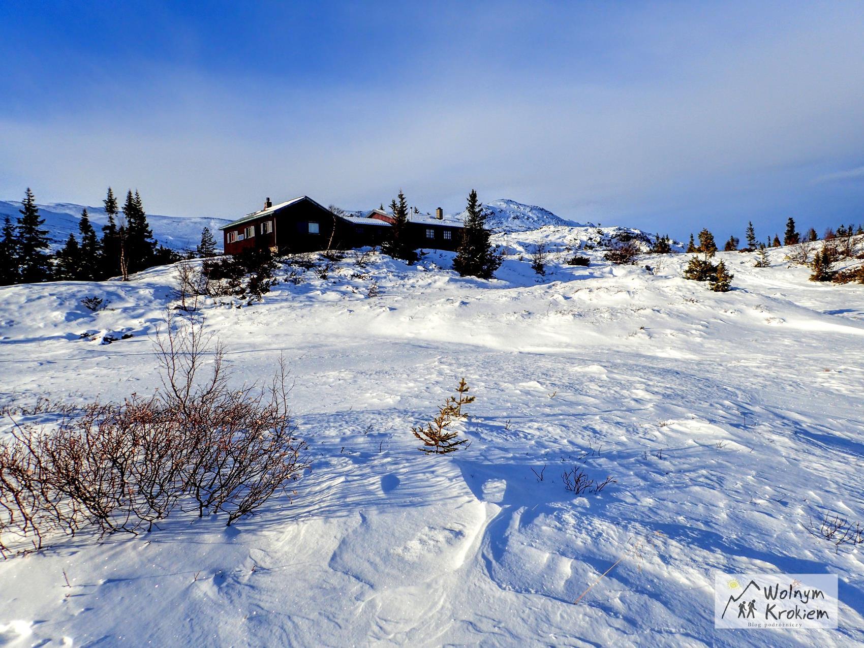 Park Narodowy Norefjell w Norwegii