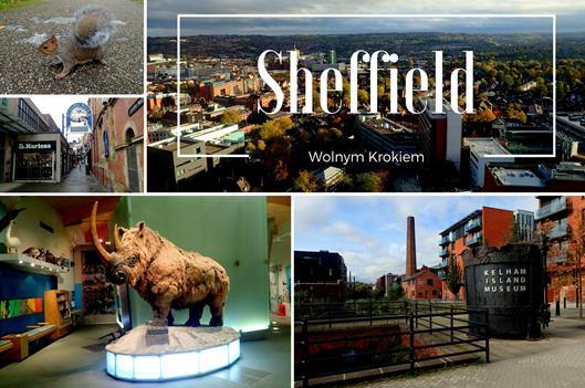 Sheffield | Miasto Stali i Studentów | Co zwiedzić? Anglia
