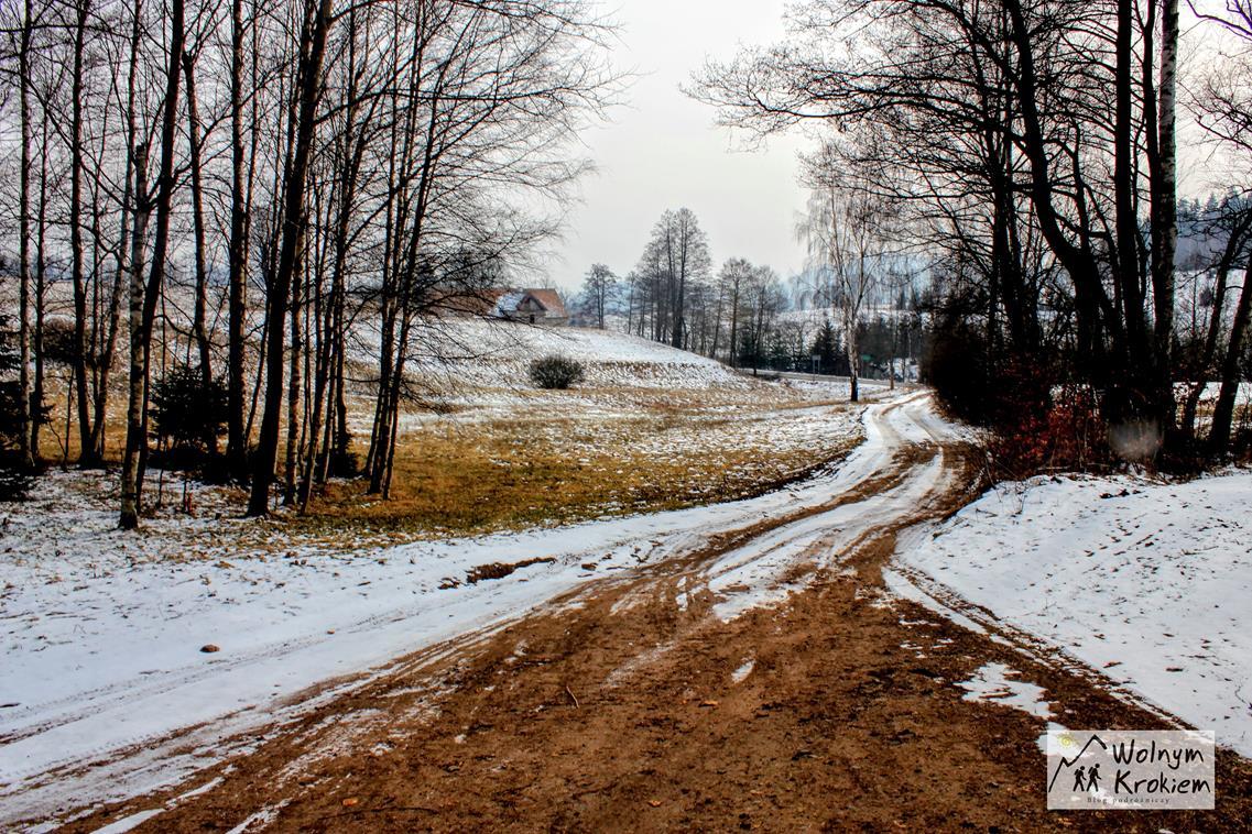 Droga dojazdowa do Czartowskich Skał