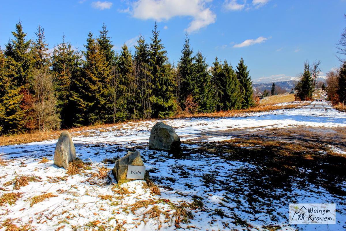Trzy Kopce Wiślańskie - szczyt (Beskid Śląski)