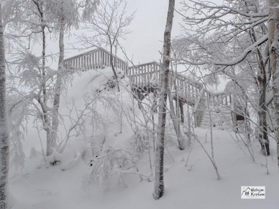 Okole punkt widokowy zimą