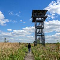 Stawy Przemkowskie w Przemkowskim Parku Krajobrazowym - wieża widokowa