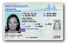 Michigan Driver's License