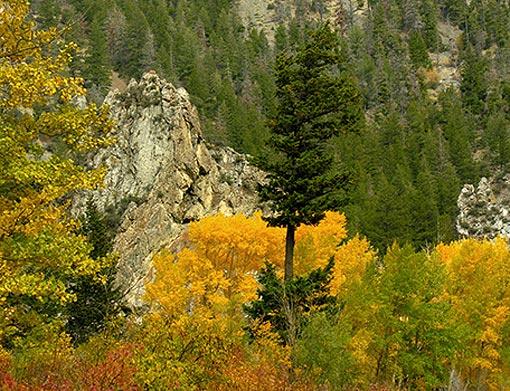 passcr-gorge8-autumn.jpg