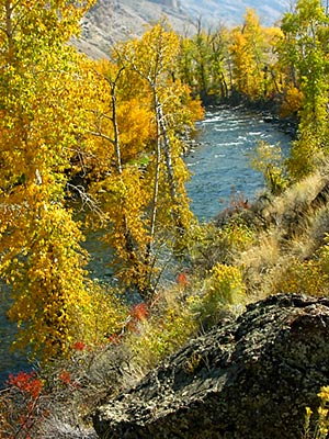 East Fork of the Salmon River, Central Idaho