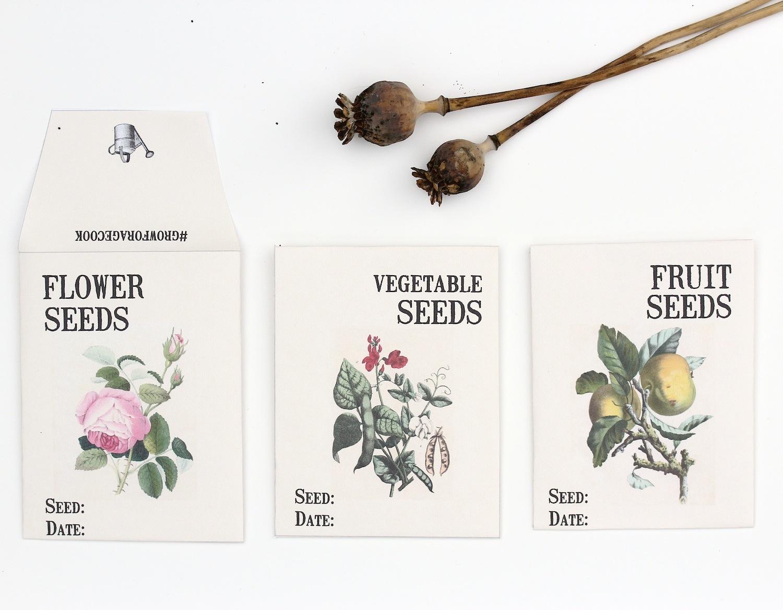 Grow Forage Cook Saving Seeds And Free Seed Envelope