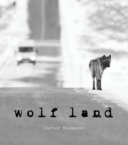 Holiday gift giving ideas: Wolfer and Wolf Land – available on Amazon or by the author