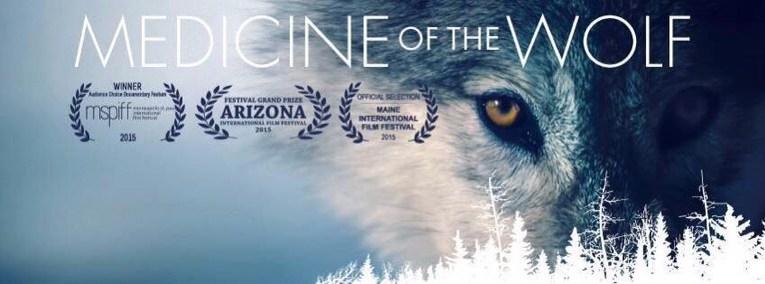 January 2017 Wolves Of Douglas County Wi News Media Amp Films