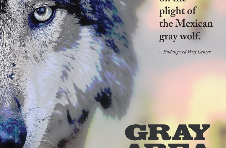 """Gray Area: Wolves of the Southwest"" documentary film will be screened during Wisconsin's Wolf Awareness Week"