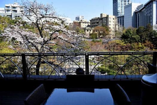 八芳園「Thrush Cafe」のテラス席からの眺め