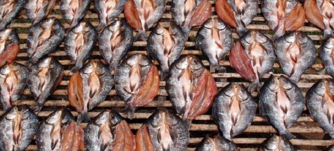 Сколько сушить рыбу