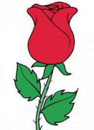 Figura Rosas A Lapiz Lección De Dibujo Cómo Dibujar Rosas