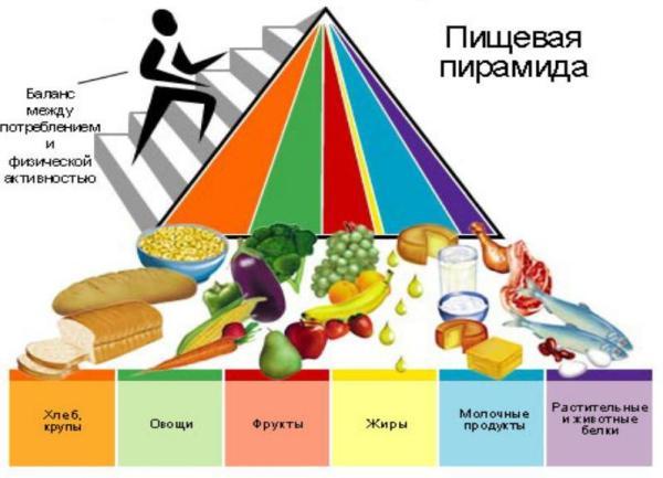 Пирамида Здорового Питания В Картинках