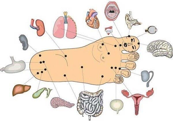 piciorul noga în varicoză