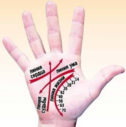 Линии на ладони Значение на правой руке что означают