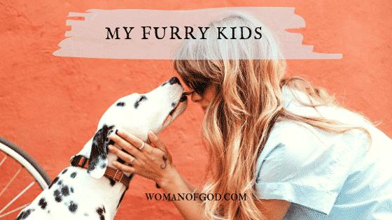 my furry kids