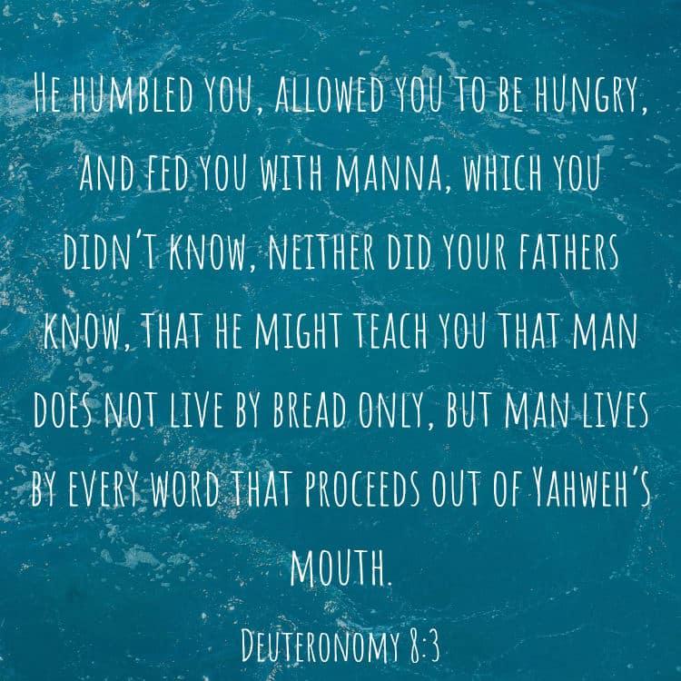 Deuteronomy 8:3 Bible Verse
