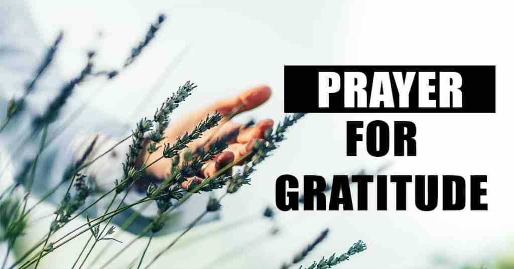 prayer for gratitude