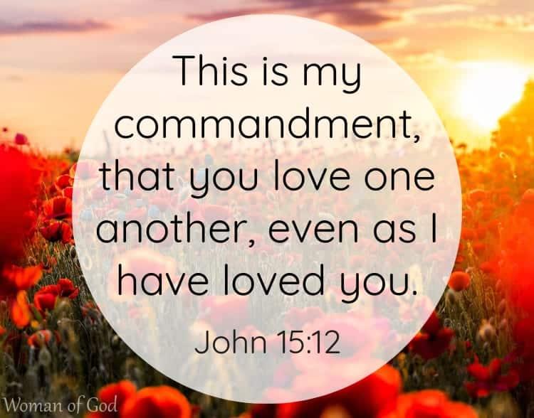 John 15:12 Bible Verse