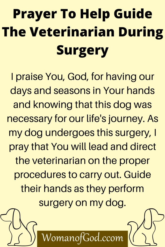 Prayer To Help Guide The Veterinarian During Surgery