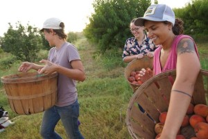 Woman farming picking fruit country working immigrant nonprofit volunteer