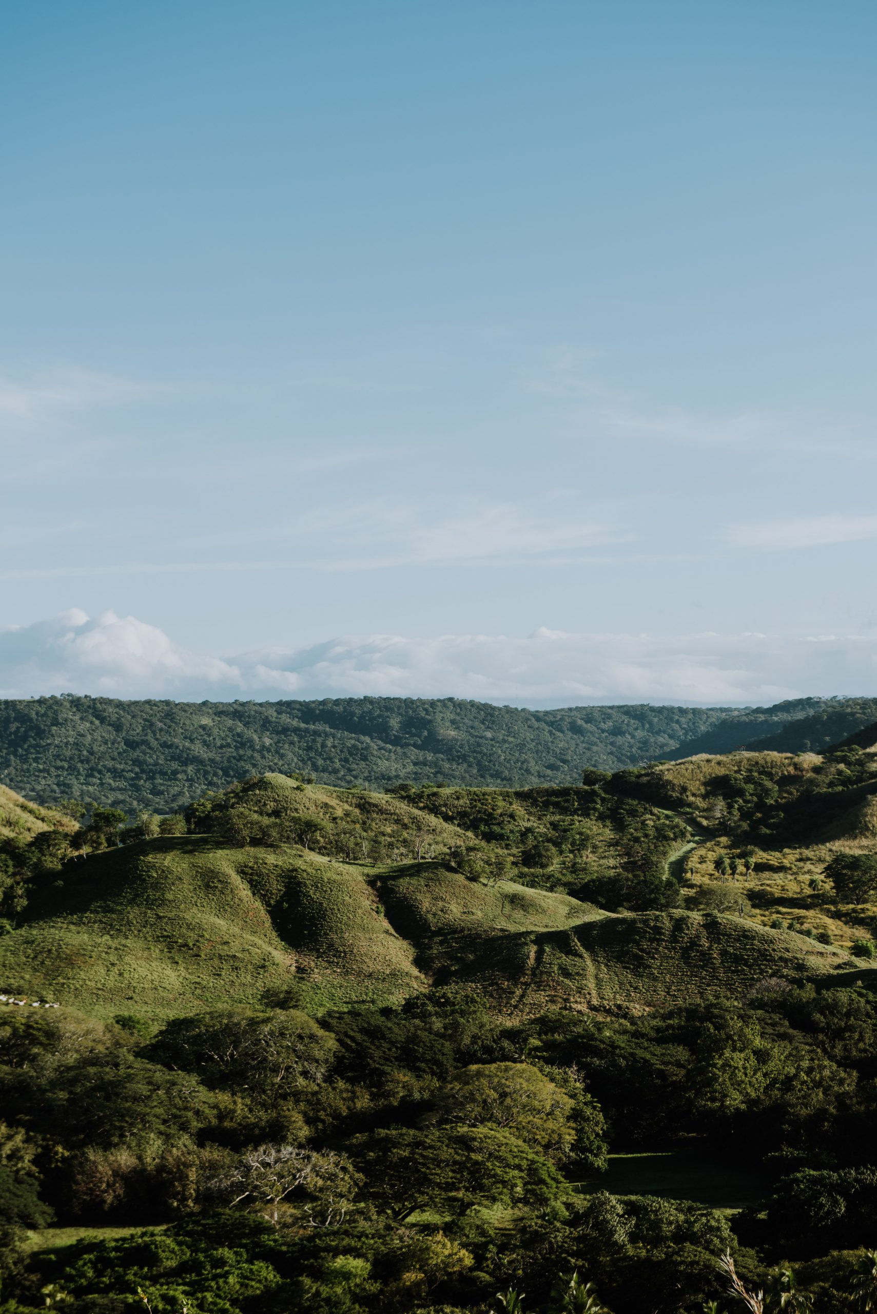 the lush mountainous landscape of costa rica