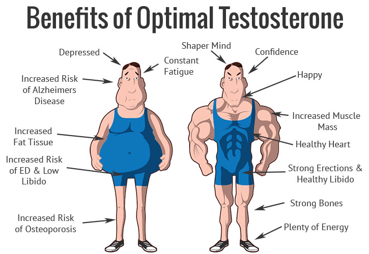 Benefit of Optimal Testosterone