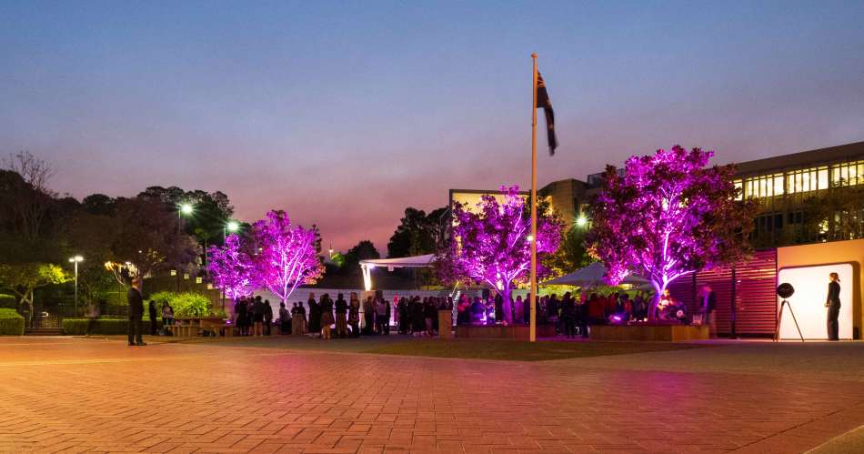 Bond University turns the trees purple for the Women in Media conference. Photo: Monique Grisanti | Uneek Creative