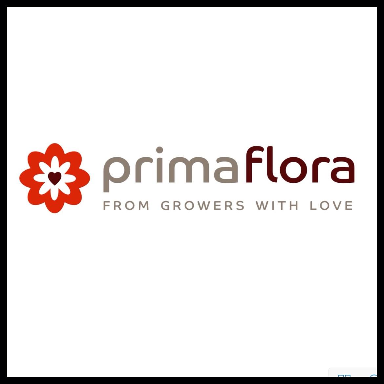 PrimaFlora Logo Sponsor