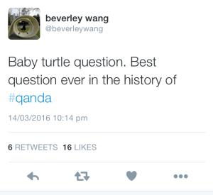 turtle tweet