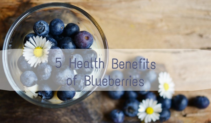 5 Magical Health Benefits of Blueberries for Women