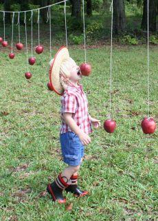 bobbing the apples