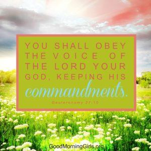 Deuteronomy 27:10