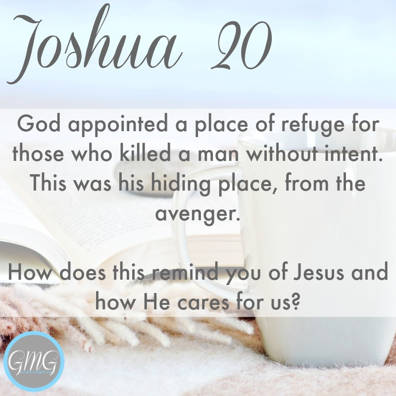 https://i1.wp.com/womenlivingwell.org/wp-content/uploads/2016/09/Joshua-20.jpg