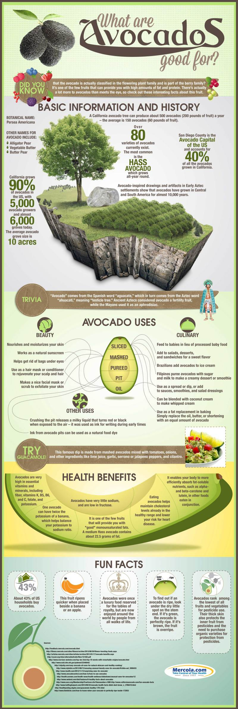 avocado-uses-health-benefits-highres