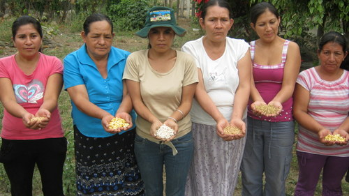 Rural Women in Peru Key to Adaptation of Seeds to Climate Change