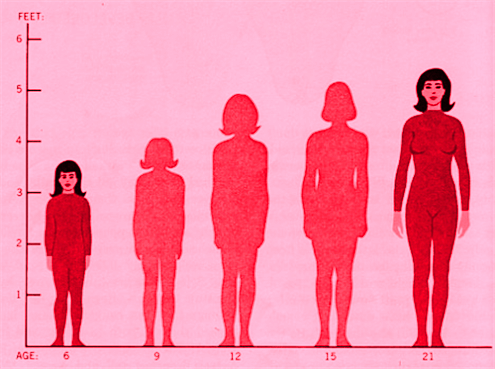 Risk rates for certain cancers may increase as a woman's height increases, says new study