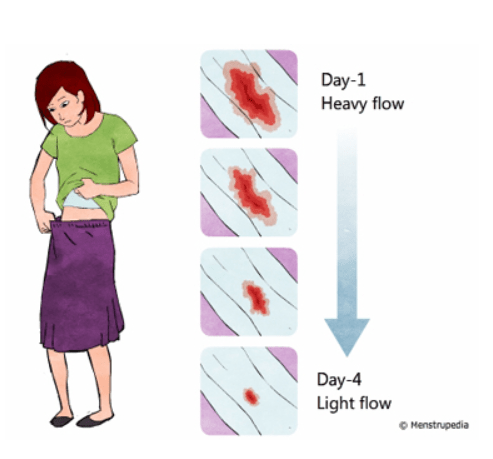 The menstrual cycle: Your guide to healthy periods