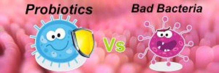 probiotics-the-friendly-bacteria