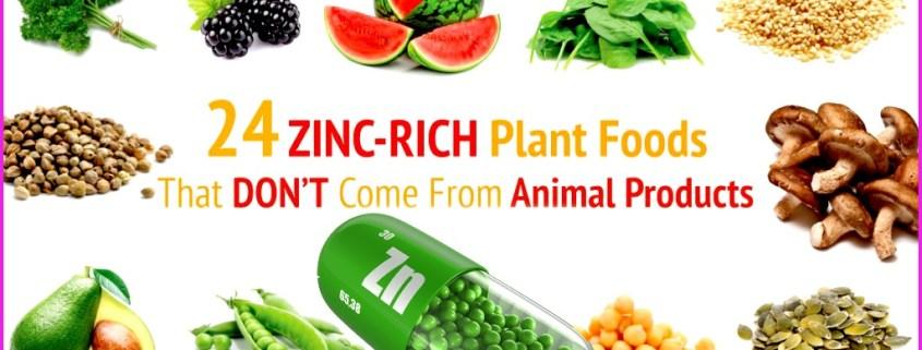 zinc-food-list