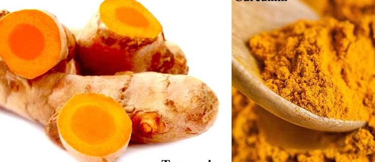 turmeric - curcumin - supplement
